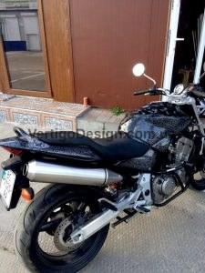 akvadruk-akvaprint-akvapechat-moto-drakon-zmiya-honda_hornet_21-225x300