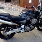 akvadruk-akvaprint-akvapechat-moto-drakon-zmiya-honda_hornet_23-150x150
