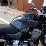 akvadruk-akvaprint-akvapechat-moto-drakon-zmiya-honda_hornet_24-150x150