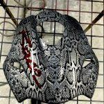 akvadruk-akvaprint-akvapechat-moto-drakon-zmiya-honda_hornet_26-150x150