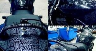 akvadruk-akvaprint-akvapechat-moto-drakon-zmiya-honda_hornet_31-310x165
