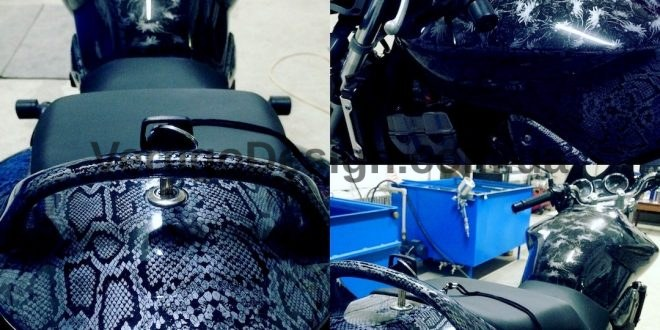 akvadruk-akvaprint-akvapechat-moto-drakon-zmiya-honda_hornet_31-660x330