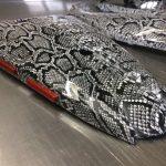 akvadruk-akvaprint-akvapechat-moto-karbon-zmiya_7-150x150